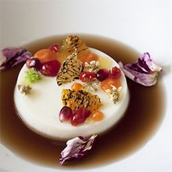 Goat's Milk Panna Cotta, pickled rose hips, burnt citrus, pickled fennel, pomegranate seeds, loquat blossoms, guava leaf tea.