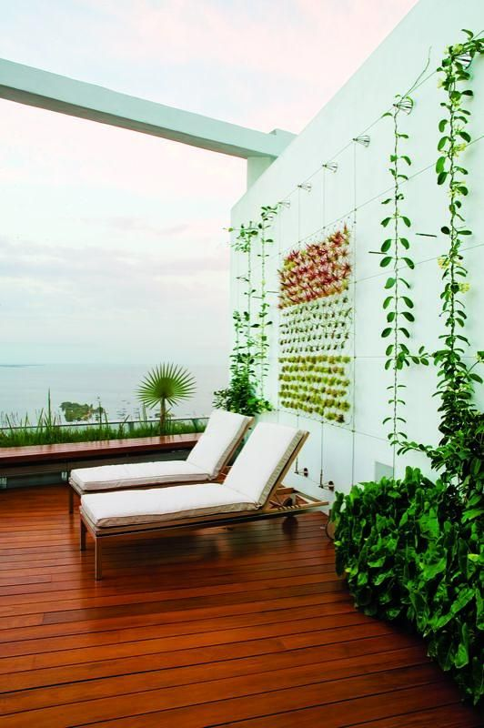 Miami Rooftop Garden Complete With Chaise Lounges For Relaxing