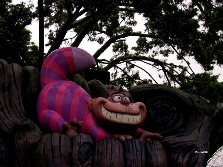 Cheshire Cat: Oh, by the way, if you'd really like to know, he went that way. Alice: Who did? Cheshire Cat: The White Rabbit. Alice: He did? Cheshire Cat: He did what? Alice: Went that way. Cheshire Cat: Who did? Alice: The White Rabbit. Cheshire Cat: What rabbit? Alice: But didn't you just say - I mean - Oh, dear. Cheshire Cat: Can you stand on your head? Alice: Oh!