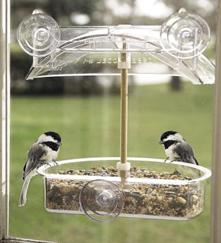 10+ best ideas about Window Bird Feeders on Pinterest ...