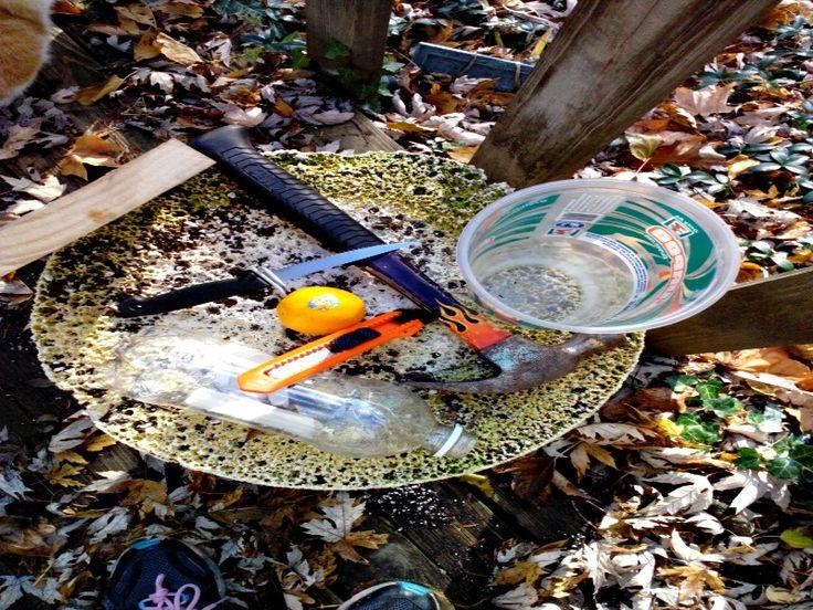 How To Get Rid Of Slugs In Your Garden If You Love Hostas
