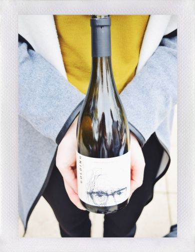 Lot 351   Golding Pinot Noir