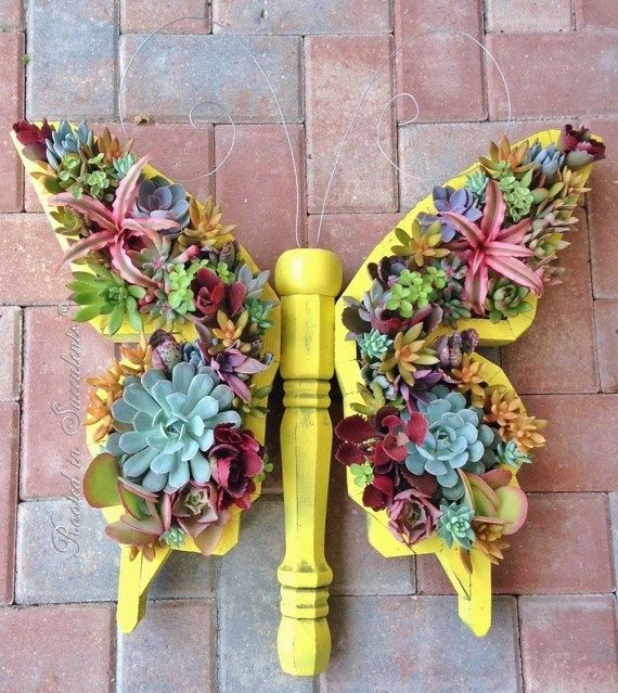 224 Best Containing Succulents Images On Pinterest