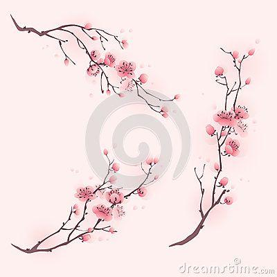 Flores da flor de cerejeira em três composições diferentes.