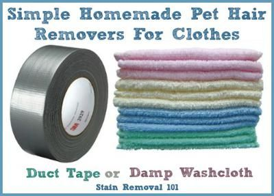 Simple products I know I already have in my home that can help me remove pet hair from clothes {on Stain Removal 101}