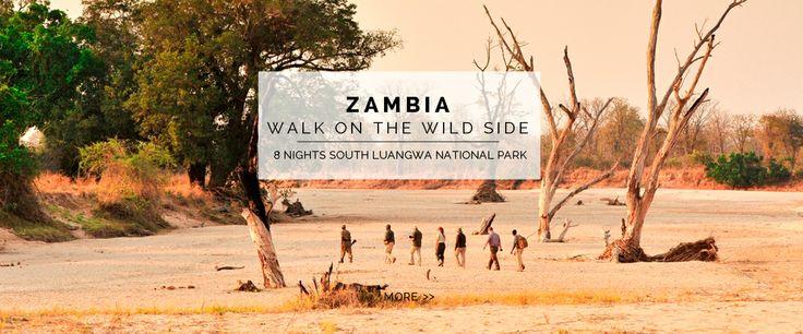 Zambia - 8 nights South Luangwa National Park