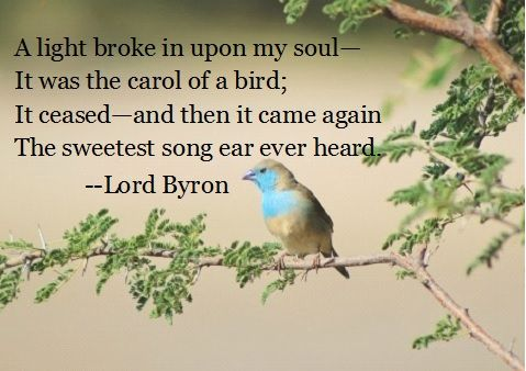 Lord Byron Music Quote