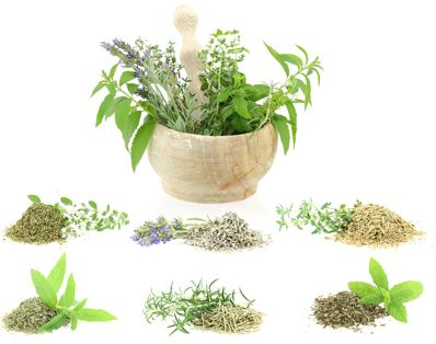 How to Alleviate Your Allergy Cough with Food and Herbs