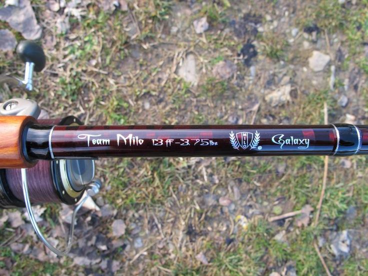 Carpfishing - Canna Team Milo Galaxy - Fishingmania.it