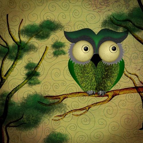 'O.Owl' by Analía Pirlone