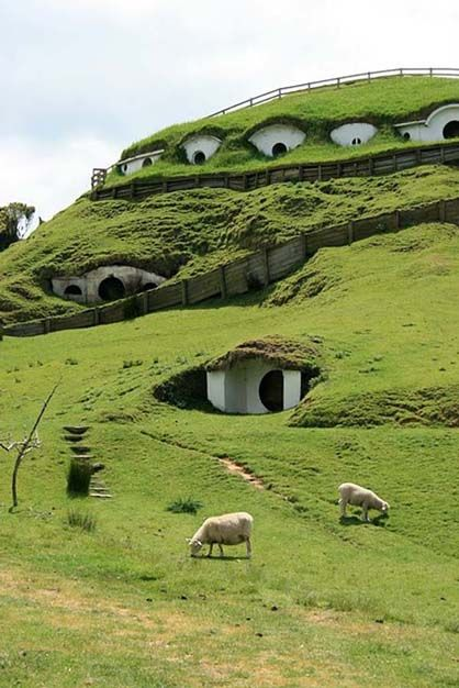 The Shire in New Zealand.The Lord, The Shire, Hobbit Hole, Hobbit Home, The Hobbit, Underground Home, Newzealand, Hobbit House, New Zealand