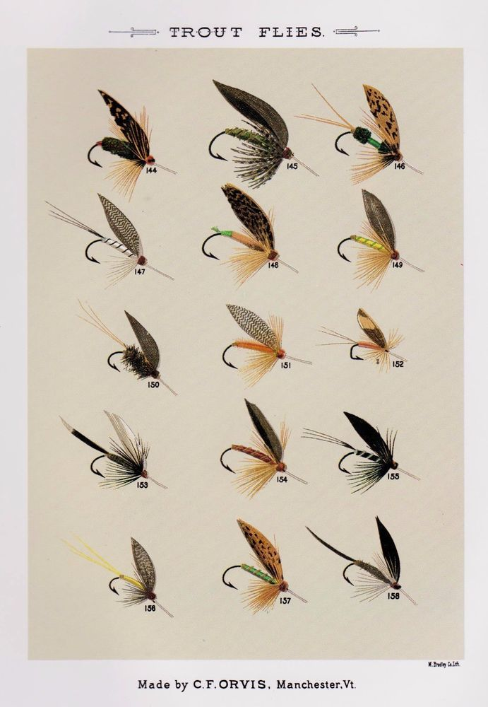 134 best images about vintage fish prints on pinterest for Fly fishing decor