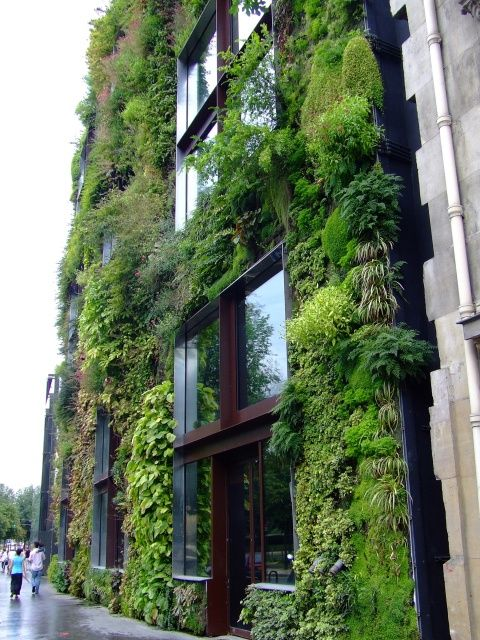 Musée des Premiere Arts Du Quai Branly covered with plants by Patric Blanc who plants vertical gardens all over the world.