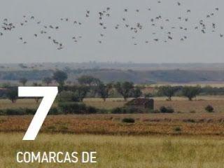 Bienvenidos al Medio Ambiente: Ruta ornitológica 7. Comarcas de Monegros y Bajo C...