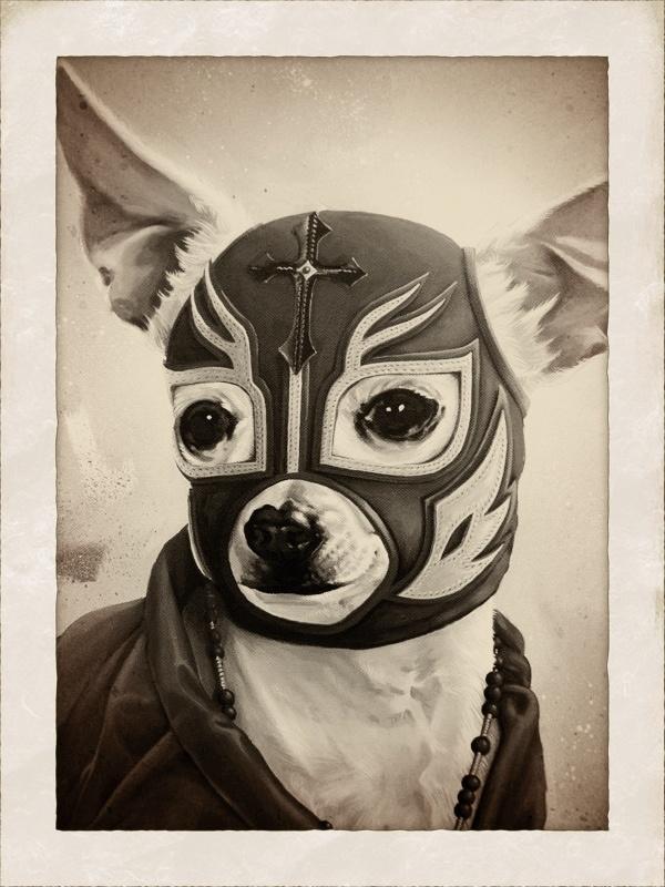 Chihuahua luchador
