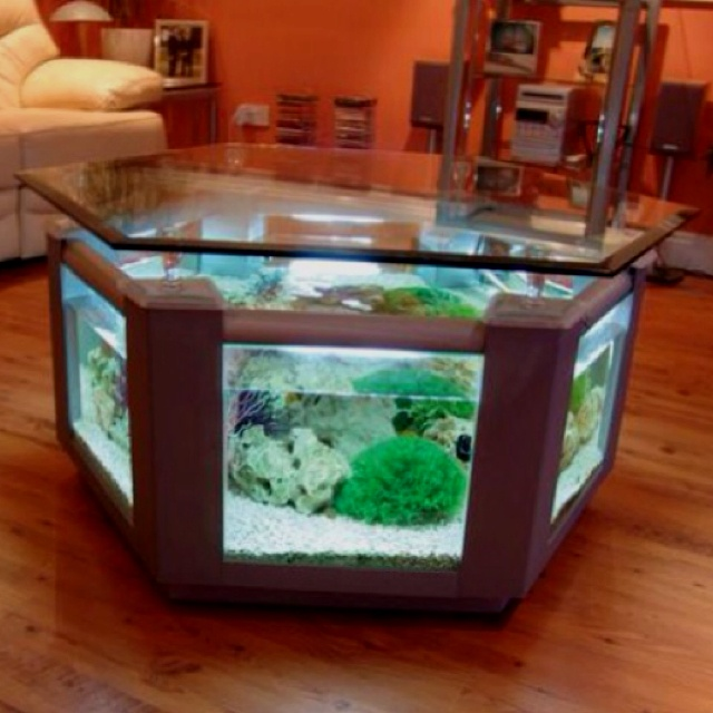 Living Room Aquarium Table