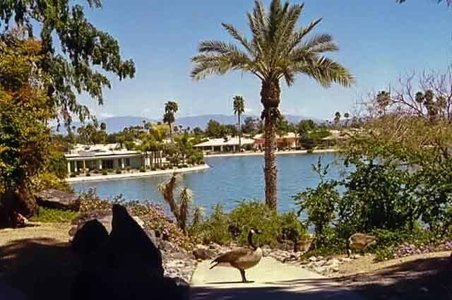 Sun City Arizona.  Where Gma&Gpa used to live.  Places I've been.
