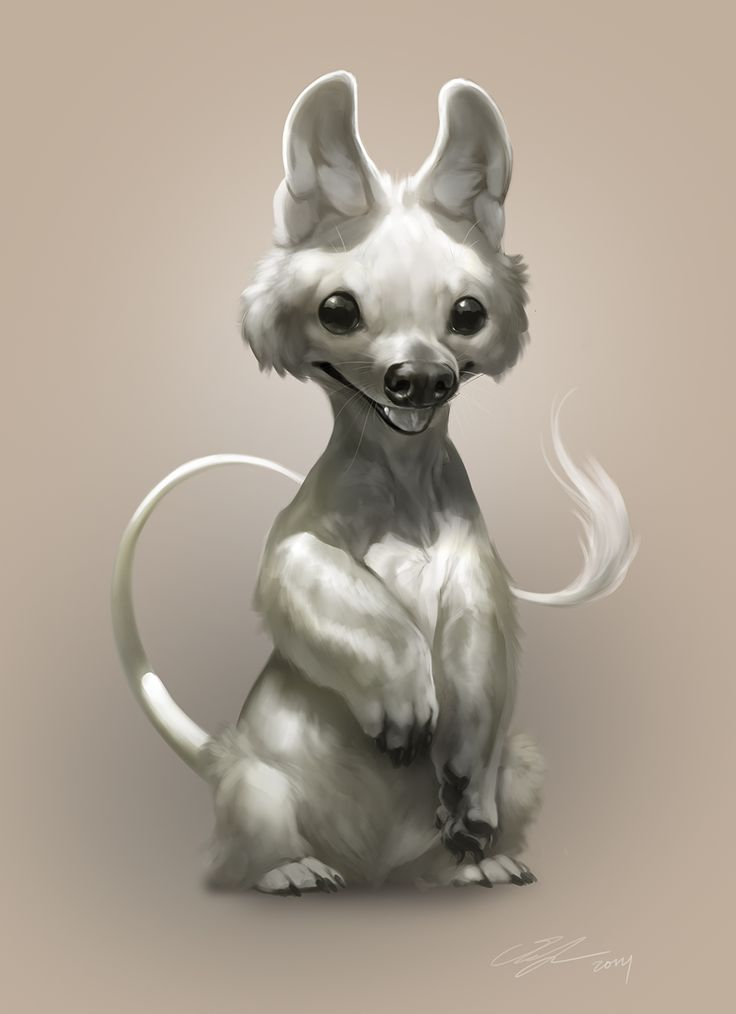 This is Reokyu, Ella's pet. Species is a Rattadog. He roams around actually eating mice.