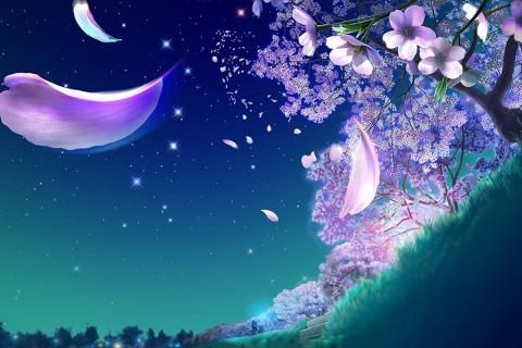 Kagaya Yutaka - Starry Blossoms