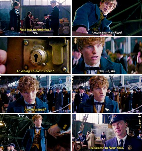 From The Fantastic Beasts and Where To Find Them NEW trailer -I have to see this movie!!!