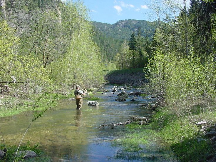 Fly fishing in spearfish canyon heck yes sioux falls for South dakota fishing