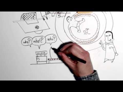 #vídeo La zona de confort #emprendimiento