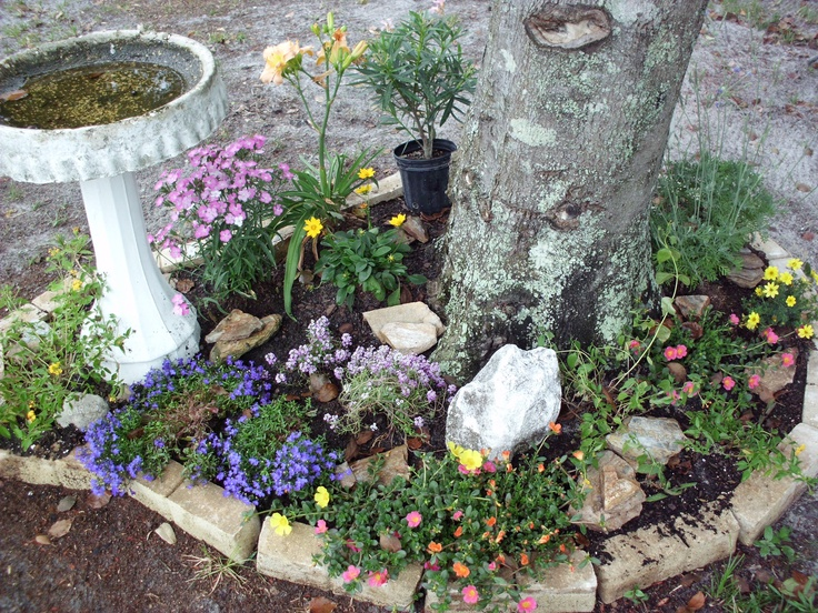 A stone garden around a tree just some flowers some rocks for Landscaping rocks and stones near me