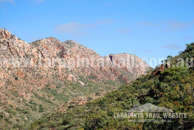 Breathtaking views of the amazing Chewings Range along Section 3, Larapinta Trail. © Explorers Australia Pty Ltd 201