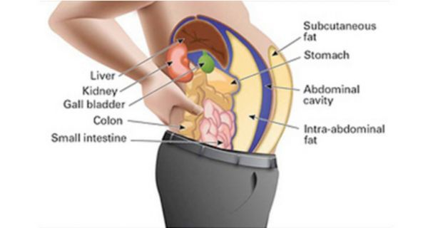 Toxins-Stored-In-Your-Fat-Cells-Are-Making-You-Fat-And-Swollen
