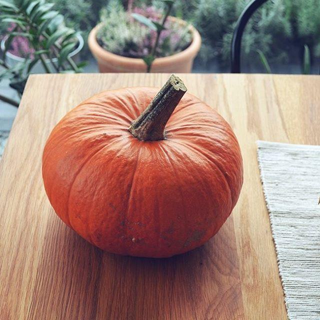 Dzień dobry w sobotę. Co dziś macie w planach?  Ja przygotowuję kolacje dla przyjaciół. Będą świece, pyszne jedzenie, posiedzimy przy kominku i pianinie :) Będziemy wspominać naszych bliskich, których już z nami nie ma Taka moja wersja halloween ;) Ta piękna dynia że zdjęcia już się gotuje w garnku na zupę krem :) #Halloween #weekend #pumpkin #dynia #kremzdynii #sobota #florencebeauty