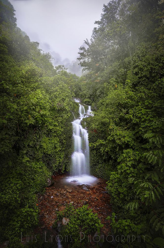 Foggy Sierra Negra Waterfall by Luis Lyons on 500px..... #forest #water #jungle #mexico #beautiful #green #waterfall #mood #rainforest #oaxaca #mexicanforest