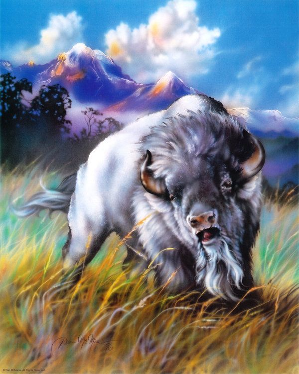 Great White Buffalo Native American Headdress Tattoo: 17 Best Ideas About White Wolf Tattoo On Pinterest