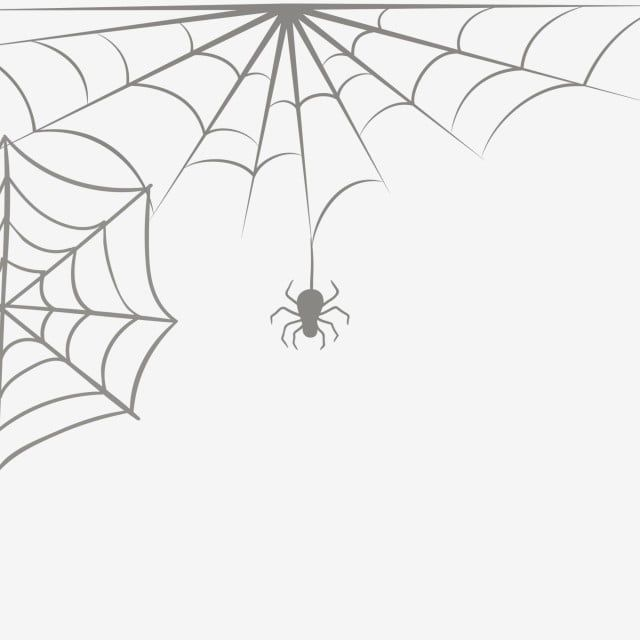 Spider Web Spider Web Pattern Image Spider Clipart Sketch Spiderweb Pattern Png Transparent Clipart Image And Psd File For Free Download Web Patterns Pattern Images Cobweb