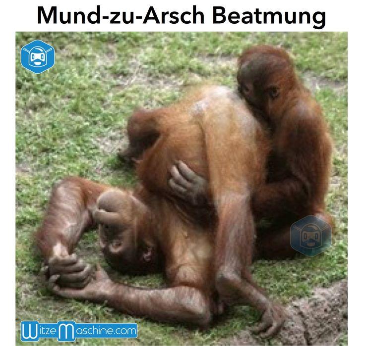 Geiler Arsch? - Ass-Lover Forum