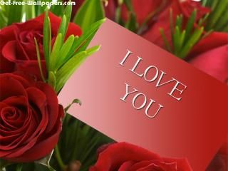 red roses i love u: Valentines Messages, Romantic Messages, 1680X1050 Wallpapers, Wallpapers Backgrounds, Valentines Day, Funny Valentines, Red Rose, Rose Wallpapers, Happy Valentines