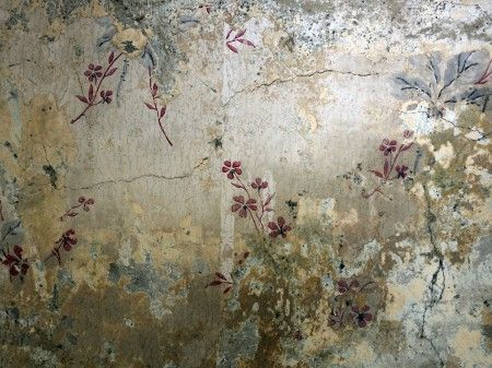 wallpaper...  there is beauty in decay  debi treloar
