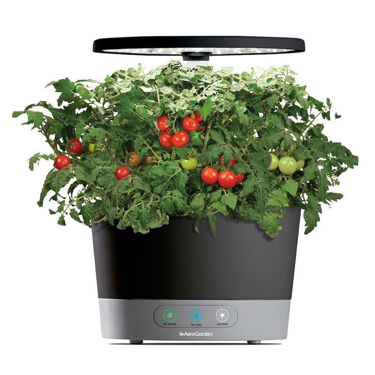 Aerogarden Harvest 360 With Gourmet Herb Seed Pod Kit 400 x 300