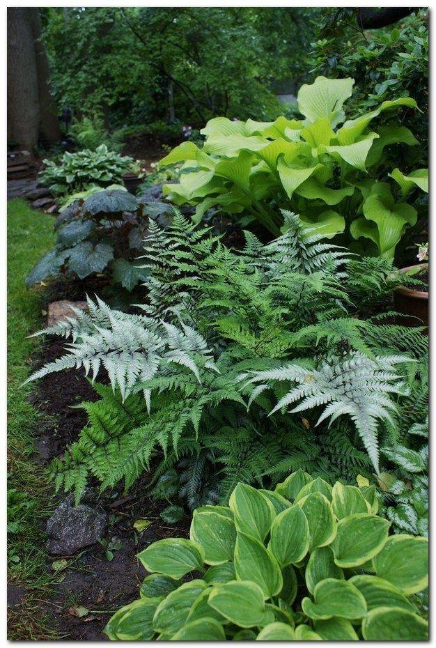 43 Einfache aber effektive Gartengestaltung mit kleinem Budget #yardlandscapingi