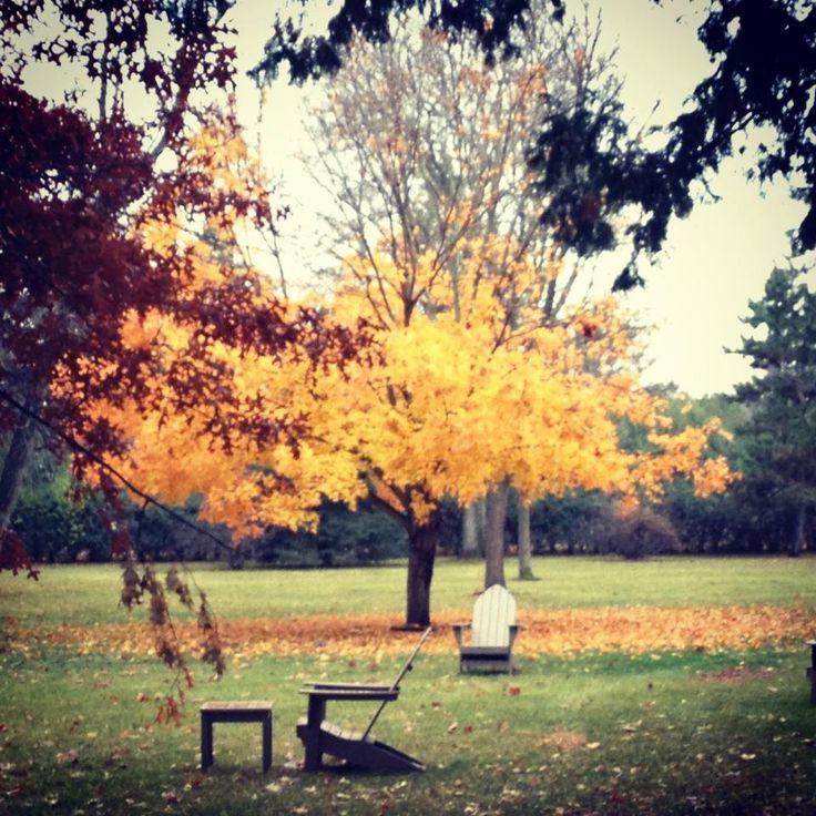 Nothing like fall at #CSBSJU