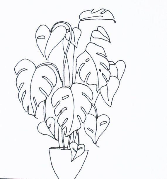 Items similar to Cheese Plant (Monstera Deliciosa) – an original art greetings card on Etsy – muji heart