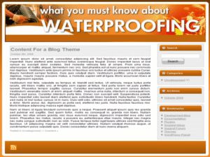 Waterproofing Niche Website Kit    Full MASTER Resale Rights