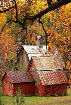 Barn's