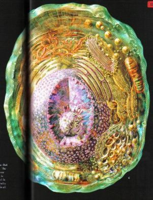 The Great Story III An animal cell, a eukaryote.Before the electron microscope, the complexity of subtle structures within the cell was not known. Now we are only beginning to appreciate the complexity of sub-cellular anatomy and physiology!