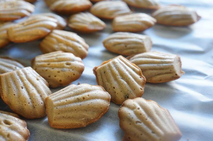 madeleines au thé earl grey au lait