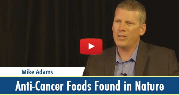 When it comes to cancer prevention, anti-cancer foods are all around us if you look to what nature provides. In this video, Mike Adams explains you where & what to look out for. Just click on the image and you'll get redirected to the video. Make sure to repine to inform your friends and family!