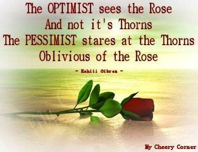 25 Best Images About Quotes About Roses On Pinterest