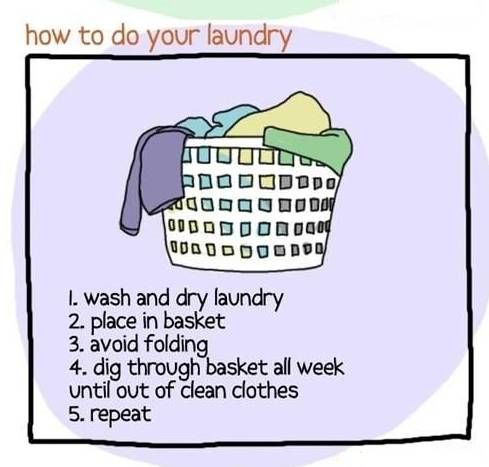 Funny Laundry Pictures 29 Best Creative Laundry Signs Images On Pinterest  Laundry Room