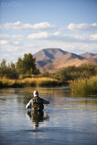 1000 ideas about fly fishing on pinterest fly tying for Silver creek idaho fishing