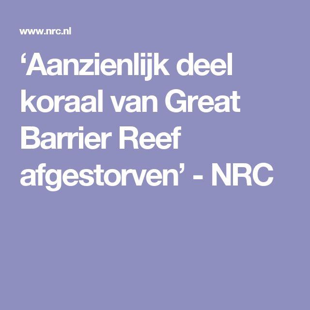 'Aanzienlijk deel koraal van Great Barrier Reef afgestorven' - NRC