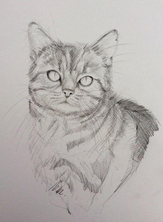 """Dessin original crayon graphite sur papier bristol """" Portrait de chat """" Black and white original pencil drawing"""